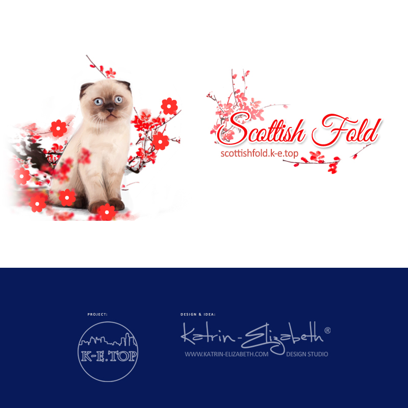 каталог розплідників кішок ScottishFold.k-e.top