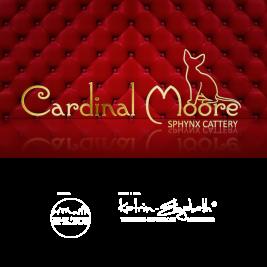 Розплідник кішок Cardinal Moore