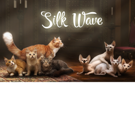 Silk Wave cattery