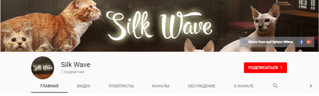 Design of official Google Plus page