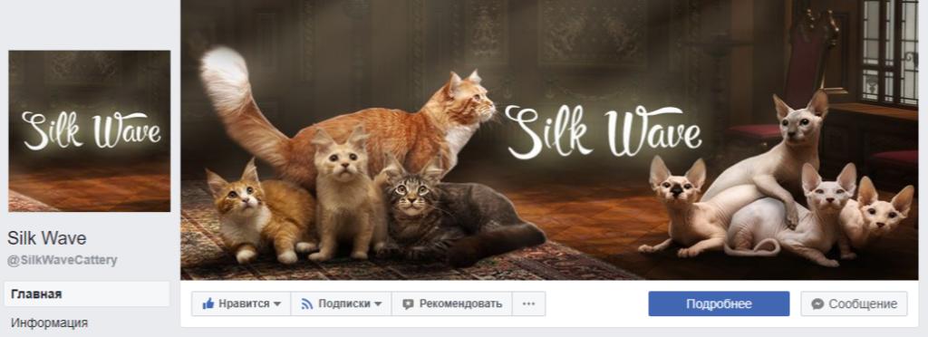 Оформление официальной Facebook страницы
