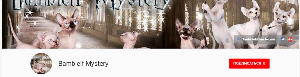 Оформление официального YouTube канала