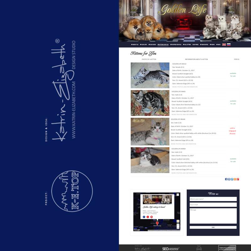 order cattery kennel website (5)