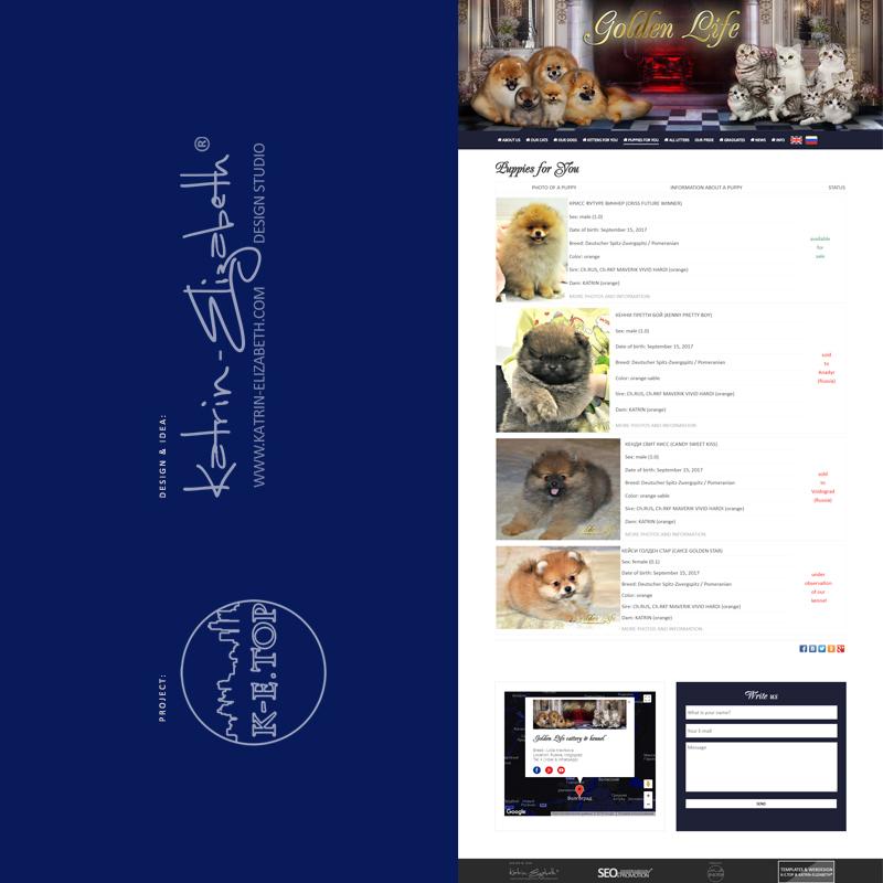 order cattery kennel website (6)