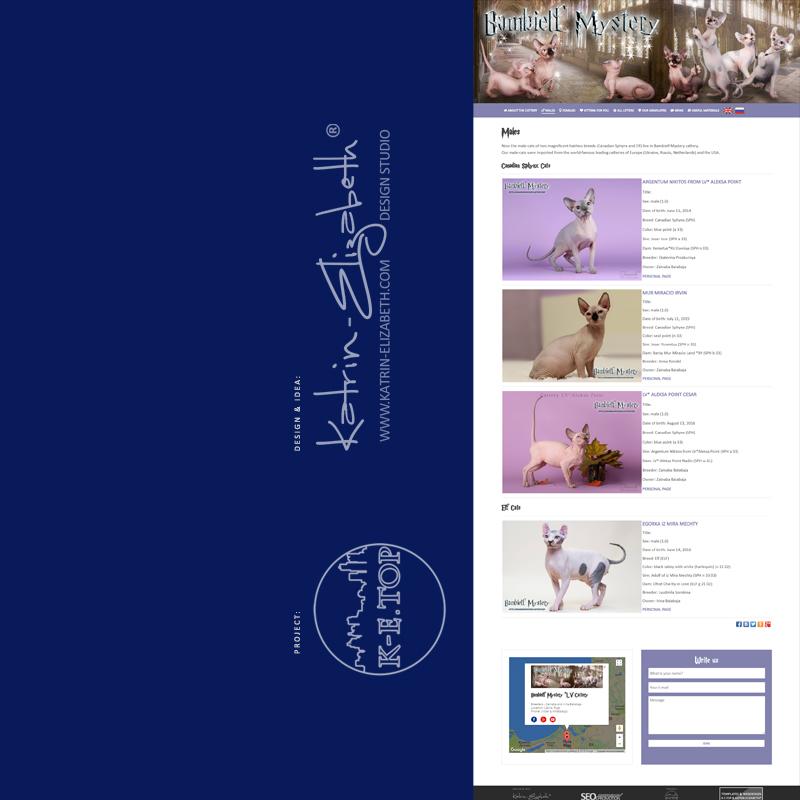 order cattery website (2)