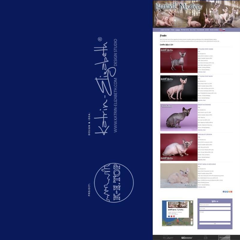 order cattery website (4)