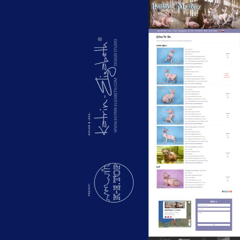 order cattery website (5)