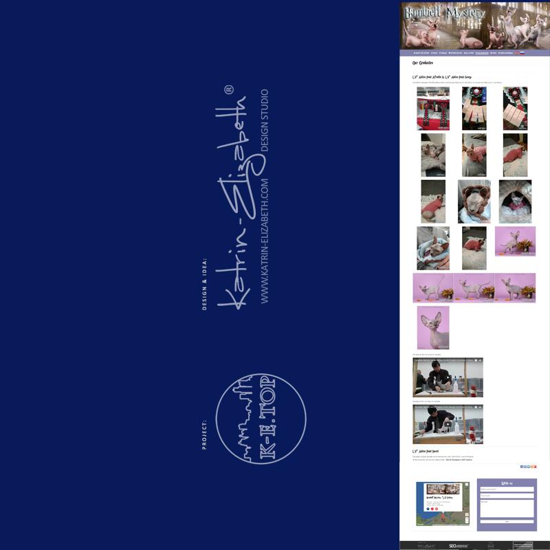 order cattery website (8)