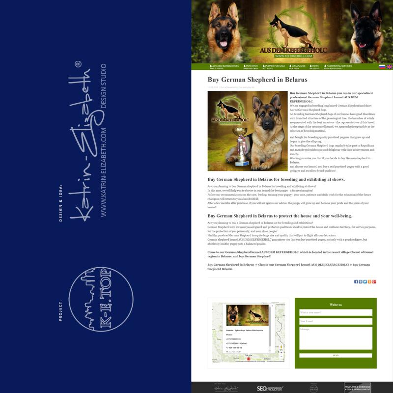 Buy German Shepherd in Belarus